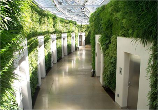 H:\1\垂直绿化\设计参考\植物墙风格\其他\10e4c2e2fc7027c9c7b97e306f876a54.jpg