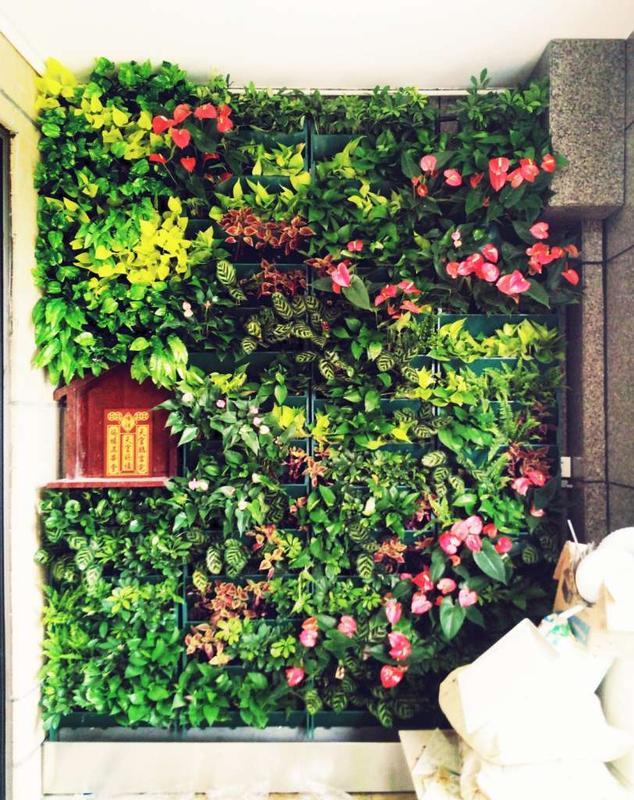 G:\环绿案例\2017项目\真植物墙案例\广州御景壹阳台绿植\1.jpg